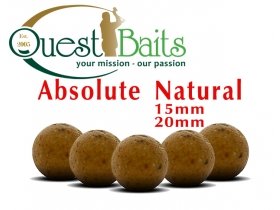 ACTUAL NATURAL BOILIES